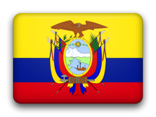 Ecuador fancy flag 320x240